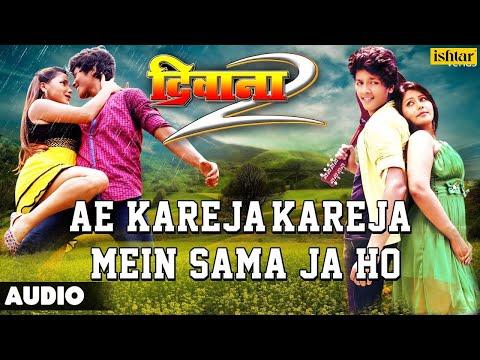 Ae Kareja, Kareja Mein Sama Ja Full Bhojpuri Audio Song | Deewana 2 | Rishabh Kashyap, Shikha Mishra