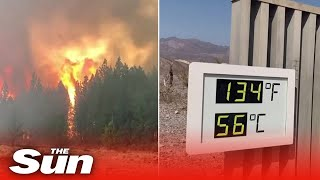 Death Valley scorched by 130F as blistering temperatures hit West Coast fuelling wildfires