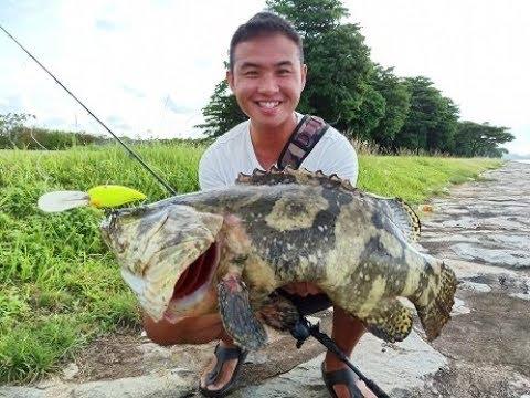 BIG FISH! Fishing In Singapore Shorelines