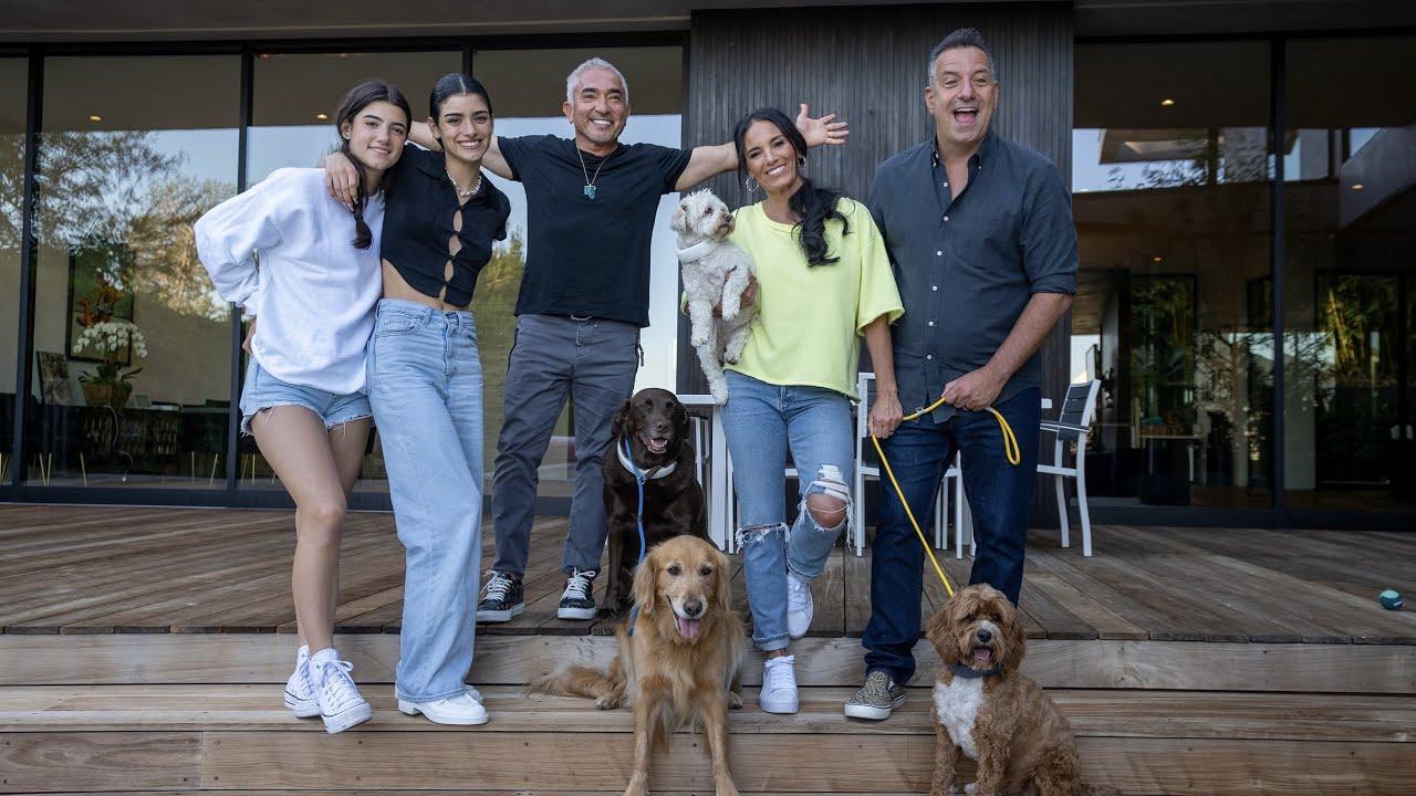 The D'Amelio Family Reviews Cesar Millan's New Halo Collar | The D'Amelio Family