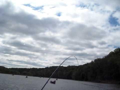 SHAD FISHING , POTOMAC RIVER  FLETCHERS COVE BOAT FISHING FLY FISHING LADY FISHING