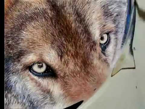 "Painting a Day Demonstration - Wolf Eyes by Roberta ""Roby ..."