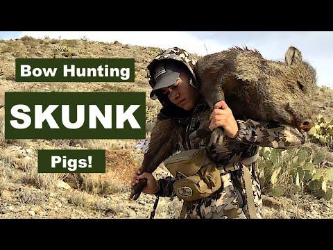 Best BOWHUNTING Stalk! Javelina Hunt On Public Land - Vid 2