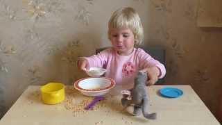 Игры с детской посудкой, горохом и кошкой. Развитие мелкой моторики у детей.
