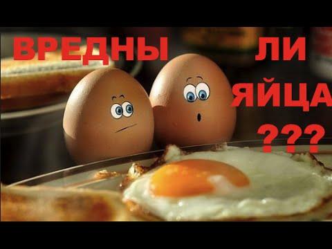 Куриные яйца - Польза куриных яиц - Вред куриных яиц