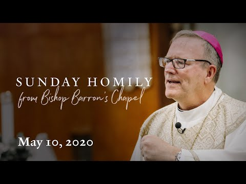 Towards the Church's Peace: Prayer and Preaching (Sunday Homily from May 10, 2020)