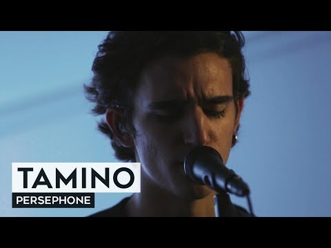 THE TUNNEL: Tamino - Persephone (live)