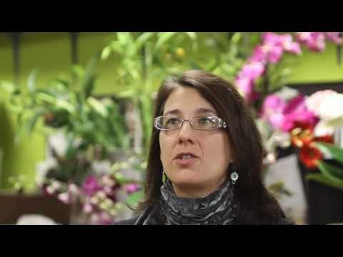 Dina Sanchez // Expert wedding florist in Breckenridge, Colorado