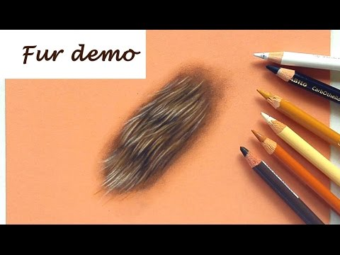 how-to-draw-fur-with-pastel-pencils-|-drawing-tutorial-|-leontine-van-vliet