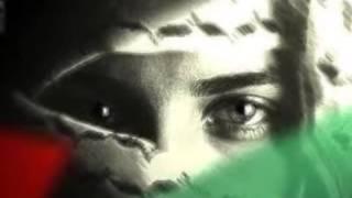 أجمل ماغنت أصالة عن فلسطين روعة