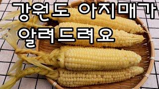 옥수수 맛있게 삶는 법/옥수수 삶는 법 (압력밥솥,만능…