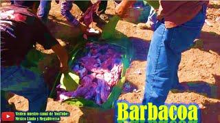 Barbacoa con 15 CHIVOS en horno de TIERRA, Puro Oaxaca 🐐 ✸ ✨ ❀