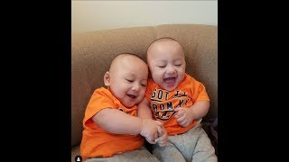 funny babies laughing hysterically compilation 2019 -  BEST Babies Laughing Videos  - Youtube