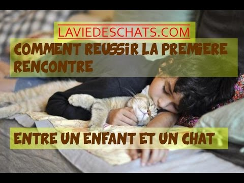 YouTube rencontres site dame chat