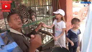 Влог #37. Египет: Зоопарк в Александрии 🙈 (рус.субтитры)