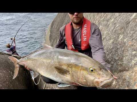 TOO MANY BIG FISH
