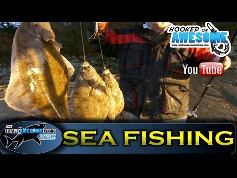 THE BEST FLOUNDER FISHING In The WORLD! - TAFishing Show