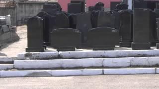 видео Виды памятников из цветного гранита