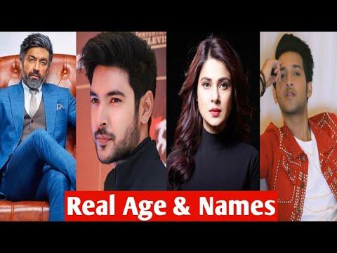 Beyhadh 2 Serial Cast Real Age & Real Name | बेहद 2 ! Maya ...