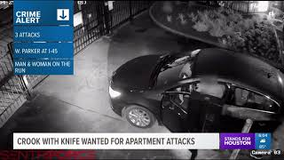 Man with knife stabs woman in face during robbery