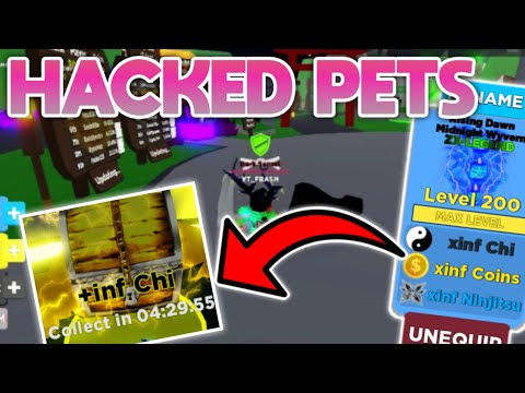 HACKED PETS ARE BACK?! *FOOTAGE* (ROBLOX: NINJA LEGENDS)