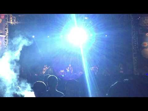 TOTALFAT - PARTY PARTY (LIVE)