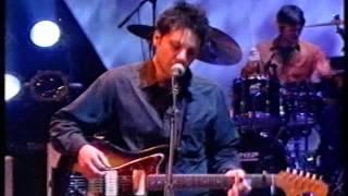 Wilco - I'm The Man Who Loves You (live on Later)