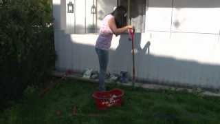 Repeat youtube video Amputee Natalie is cropping flowers in her garden