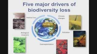 Seminar: Interactions between climate change and biological invasions – Franck Courchamp