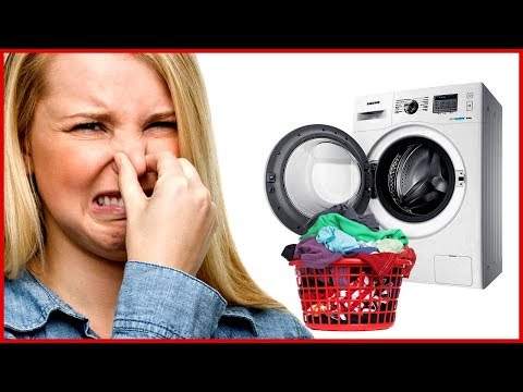После стирки воняют вещи или барабан стиральной машины - что делать?