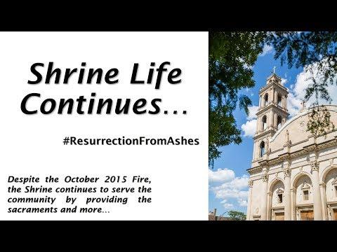Shrine Life Continues, 2017