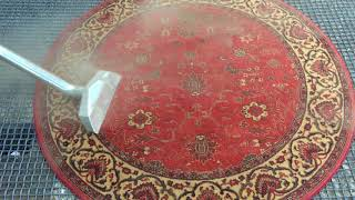 Dusty rug with Art of Clean Cambridge