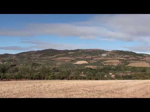 Salselas Vale da Porca Serra de Bornes 12-9-17