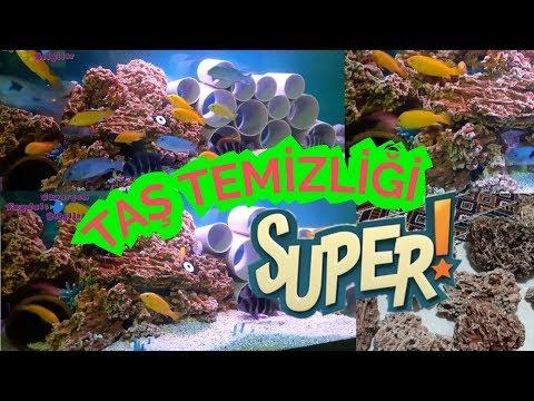 AKVARYUM TAŞ DİZAYNI, Akvaryum Balıkları, Akvaryum Taşları Nasıl Temizlenmeli, Aquarium Stones