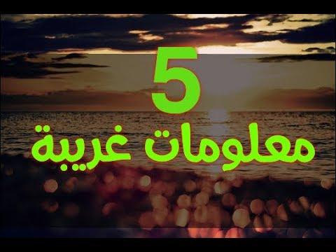 5 معلومات غريبة