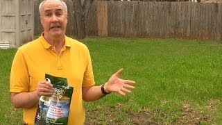 Grassology Review- As Seen On TV Grass Seed | EpicReviewGuys