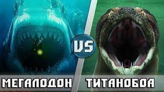 МЕГАЛОДОН vs ТИТАНОБОА