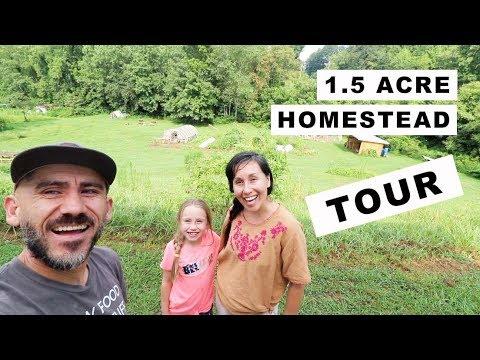 1.5 Acre Homestead TOUR!! (homesteading family)
