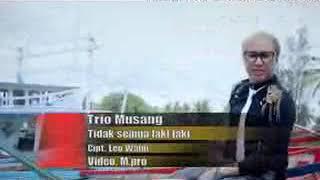Lagu Dangdut Terbaru - TIDAK SEMUA LAKI-LAKI - Trio Musang