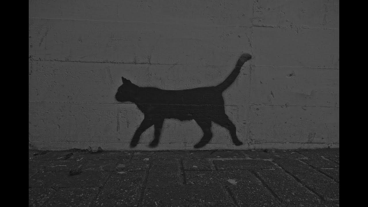 Hässlich - Ugly The Cat - Eine rührende Geschichte (Feelspasta/Sad Story)  German/Deutsch - YouTube