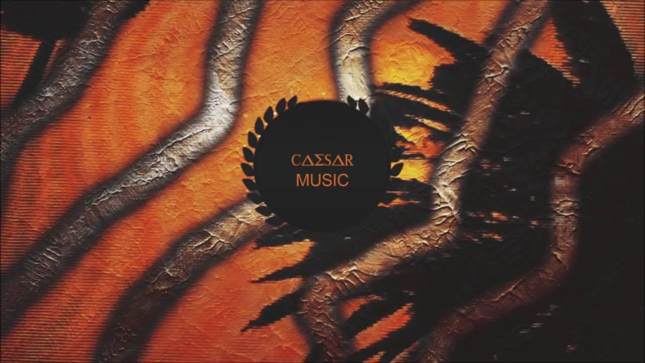 pleasurekraft - tarantula (short mix)