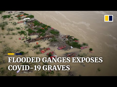 Rising Ganges river gives up India's Covid-19 dead