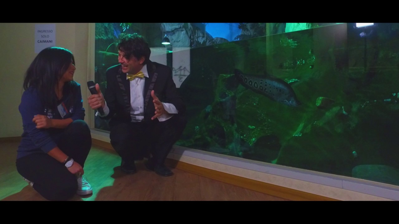 Pesce Azzurro Show Webseries Episodio 1x30 Acquario Di Cattolica