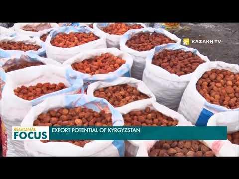 Export potential of Kyrgyzstan