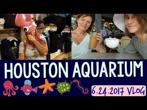 Vlog: Indian food, HOUSTON AQUARIUM, ASIAN SKIN CARE 🍛🐠☕