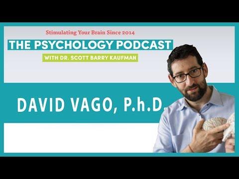 Mind the Mindfulness Hype with David Vago    The Psychology Podcast