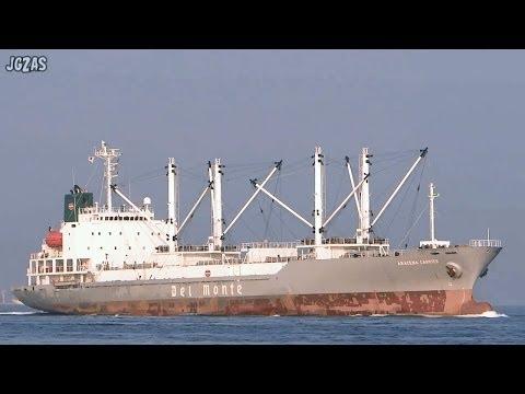 [船] ARACENA CARRIER Reefer cargo ship 冷凍貨物船 Osaka Port 大阪港 2014-MAR