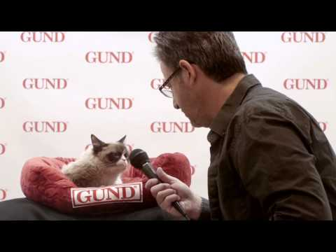 My Interview with Grumpy Cat