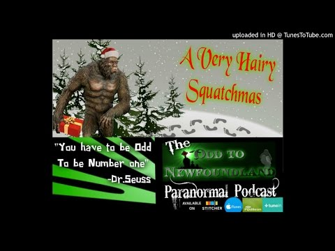 Odd To Newfoundland Paranormal Podcast #34: A Very Hairy Squatchmas 2016