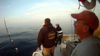 yellowfin tuna - Hydrographers canyon